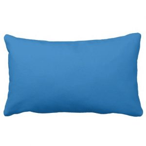 http://www.zazzle.com/i_heart_libraries_black_blue_pillow-189663764893983370