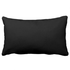 Write Drunk Edit Sober Lumbar Pillow (red and black)