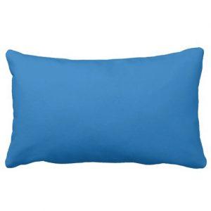 http://www.zazzle.com/i_heart_libraries_black_blue_pillow-189663764893983370